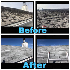 Before and After Replacing Shingles